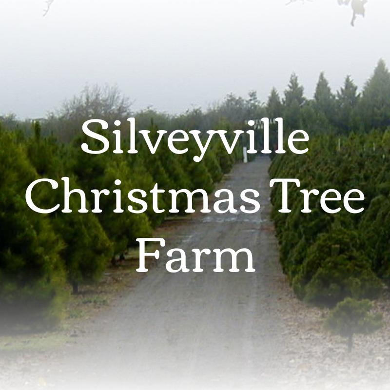 home silveyville farm
